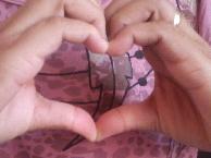 heart_bicaum