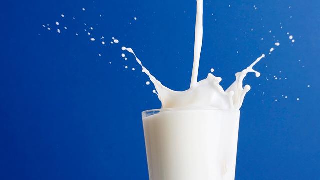 http://files.comunidades.net/oportaldateologia/leite_vegetal_remedio_caseiro_sos_solteiros.jpg